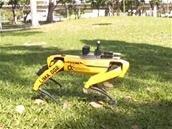 À Singapour, le robot Spot de Boston Dynamics rappelle les gestes barrières
