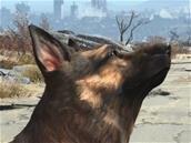 Fallout 4 offert avec un casque HTC Vive