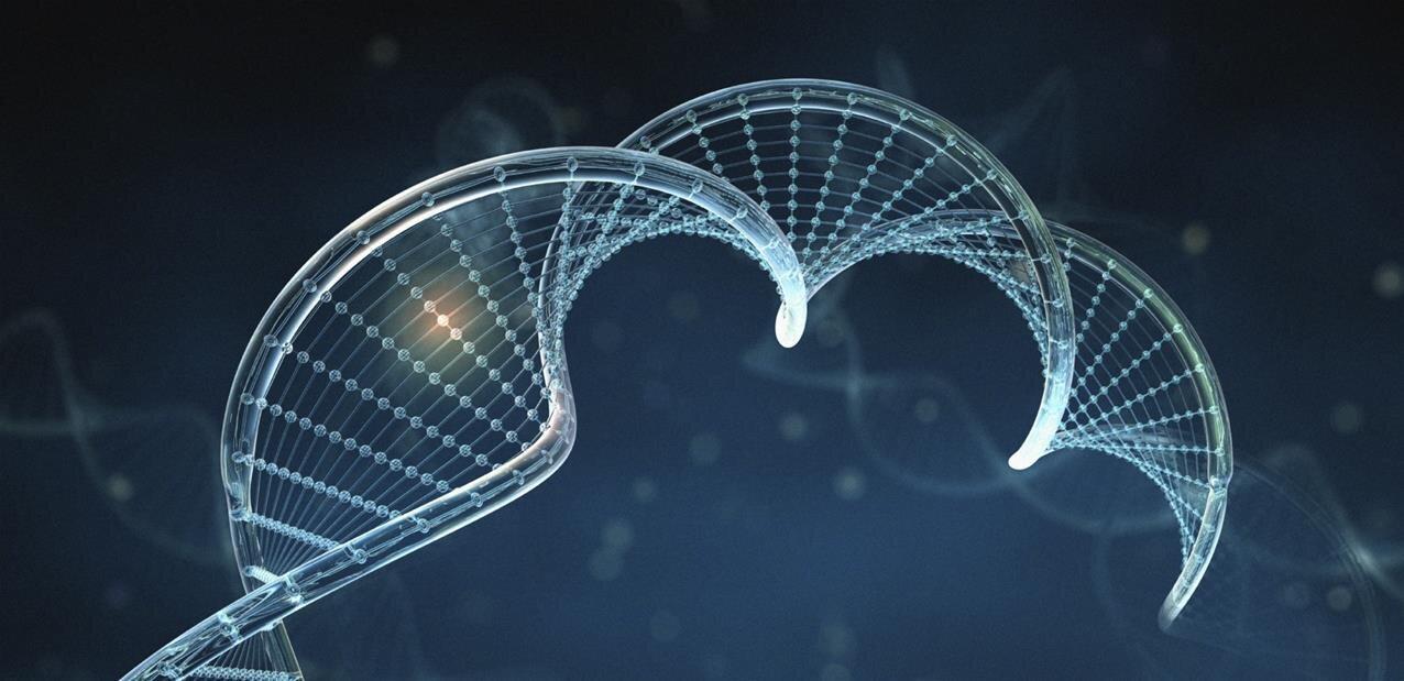 Analyse ADN : quand Dante Labs s'emmêle les pinceaux avec des échantillons