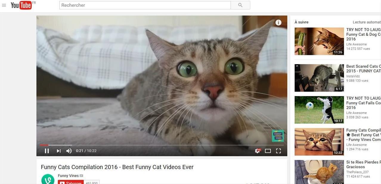 YouTube Premium permet le téléchargement de vidéos 1080p, le début de la chasse aux outils tiers ?