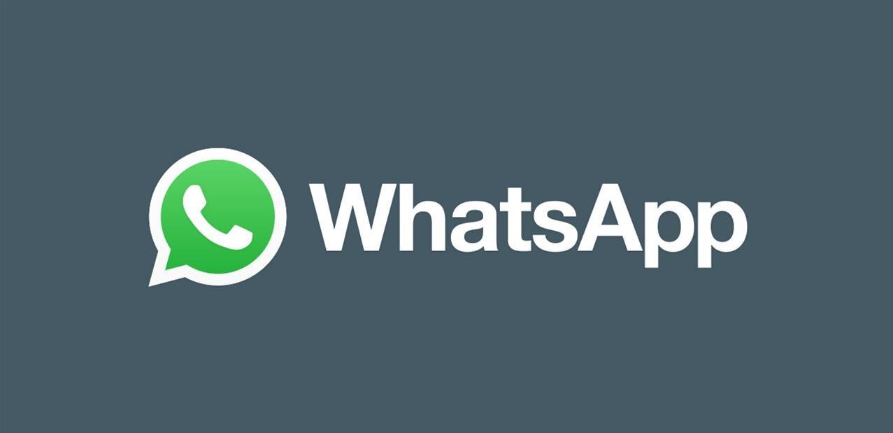 WhatsApp : vague de nouveautés, dont les stickers animés, les QR codes et le thème sombre sur le web