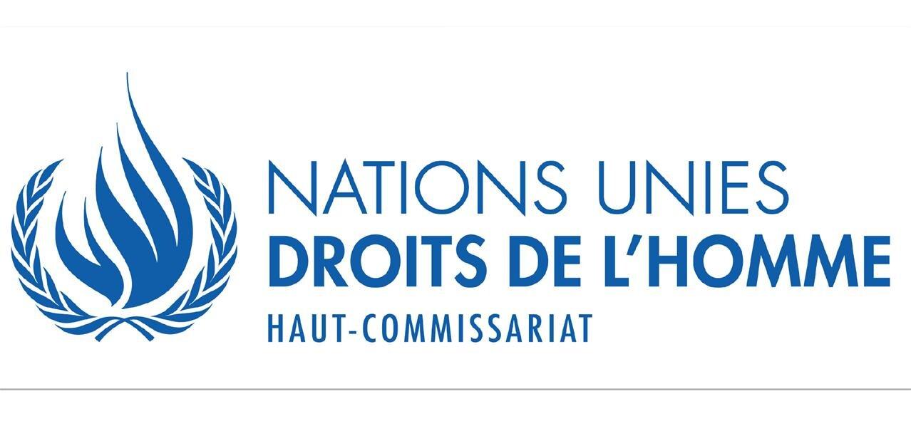 Directive Droit d'auteur: à l'ONU, les inquiétudes du Rapporteur spécial à la liberté d'expression