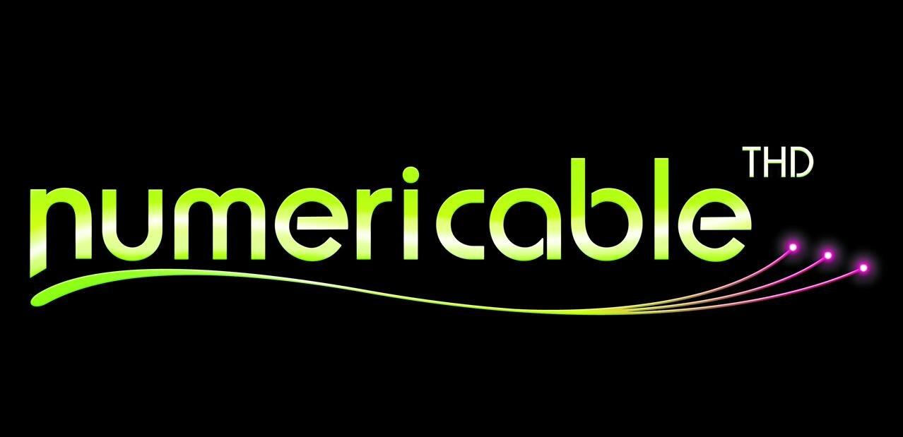 Fibre : Numericable-SFR débouté en cassation face à Orange