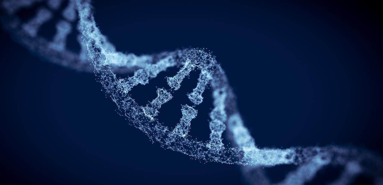 FNAEG : la CNIL s'alarme de l'extension du fichier national des empreintes génétiques