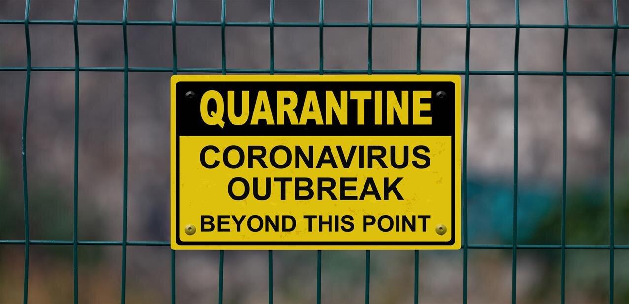 Le coronavirus inspire les noms de domaine