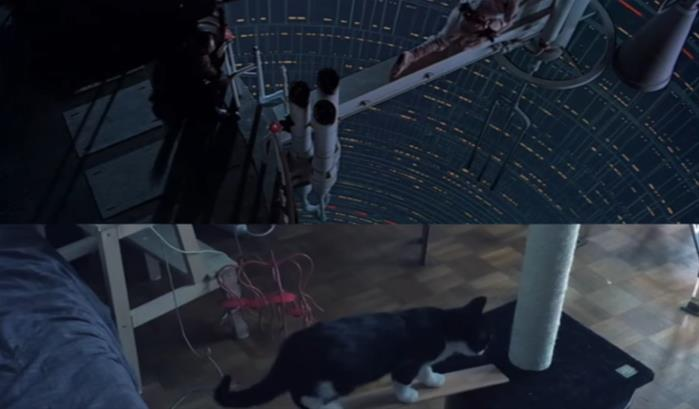 The Empire Scratches Back, ou Star Wars avec des chats