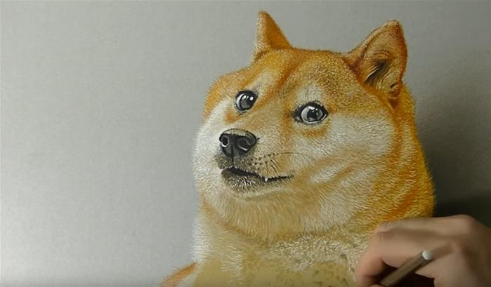 Wow, such Doge, very art...